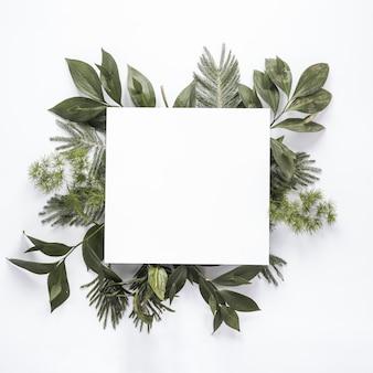 Pequeño papel sobre ramas de plantas verdes en mesa
