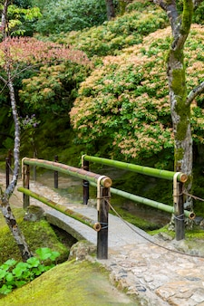 Pequeño puente de bambú en japón otoño