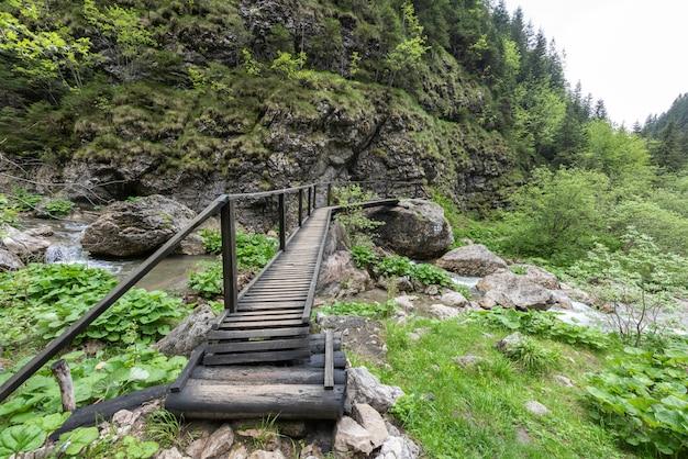 Pequeño puente de madera en las montañas de los cárpatos