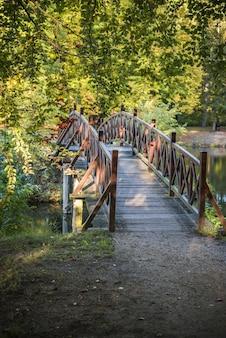 Pequeño puente en el parque branitz