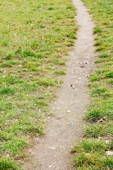 Pequeño sendero sobre hierba