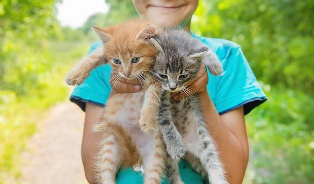 Pequeños gatitos en manos de niños.