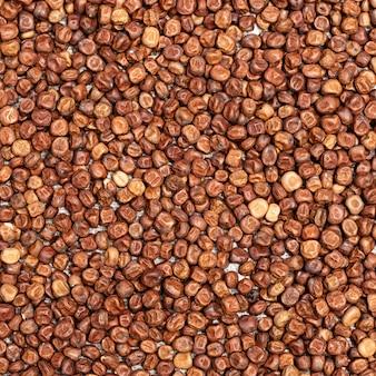 Pequeños granos de legumbres semillas de frijol