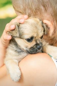 Perrito sentado en el hombro