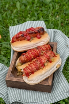 Perritos calientes con mostaza, salsa de tomate en una mesa de picnic