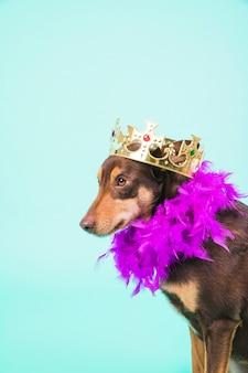 Perro con corona y plumas