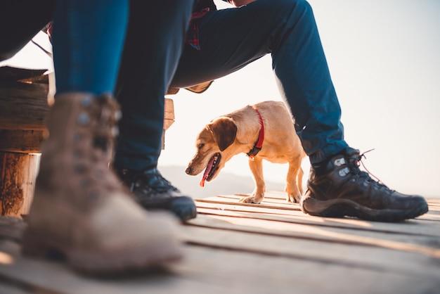 Perro debajo de las piernas de los excursionistas