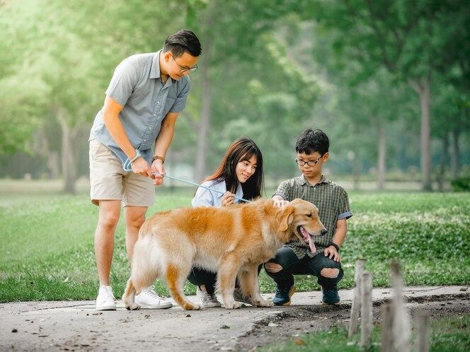 Perro golden retriever jugando con la familia asiática en el parque