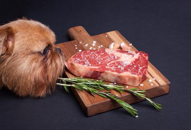 El perro hambriento intenta robar un trozo de carne de mármol.