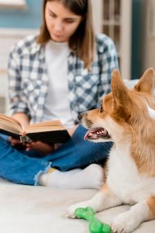 Perro mirando el libro de lectura del dueño femenino