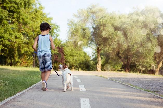 Perro y niño hacia atrás caminando en la puesta del sol del parque.