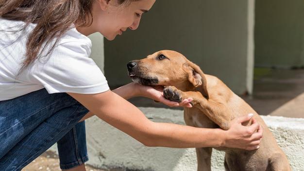 Perro de rescate disfrutando de ser mascota por mujer en el refugio
