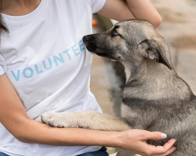 Perro de rescate queriendo el afecto de la mujer en el refugio