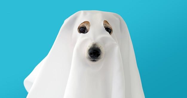 Perro sentado como un fantasma aterrador y espeluznante