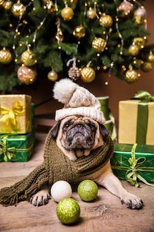 Perro con sombrero cuidando regalos preparados para navidad
