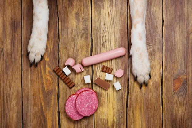Perros patas y neb y montón de comida de perros prohibidos