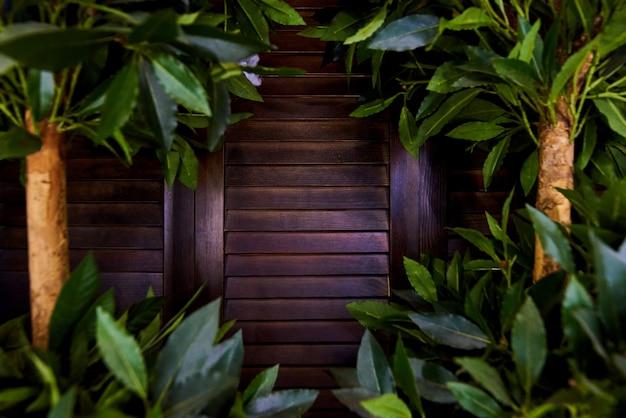 Persianas de madera de primer plano en el denso y exuberante follaje de los árboles.