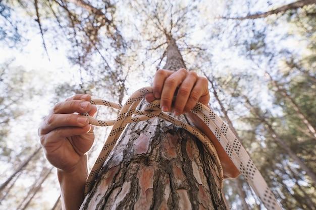 Persona anónima que ata la cuerda alrededor del árbol