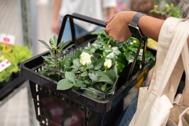 Persona con canasta de plantas para decoración del hogar y jardín