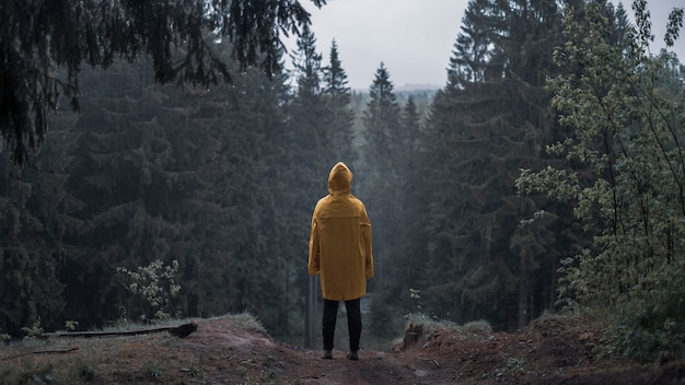 Persona en un impermeable amarillo en un bosque sombrío en una colina bajo la lluvia