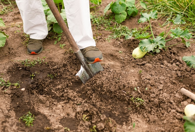 Persona de primer plano cavando el suelo