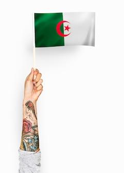 Persona que agita la bandera de la república democrática popular de argelia