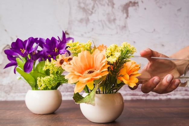 Una persona regando las flores en el florero en mesa de madera