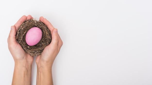 Persona sosteniendo nido con huevo de pascua rosa