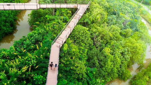 Personas de hombre y niña en la vista superior a pie en el cielo de madera pasarela en el bosque con árboles