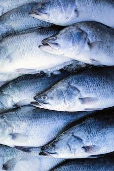 Pescado barramundi fresco de mariscos en el mercado