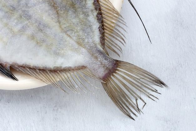Pescado crudo fresco en plato