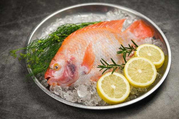 Pescado fresco en hielo con hierbas especias romero y limón - pescado crudo tilapia roja sobre fondo de placa