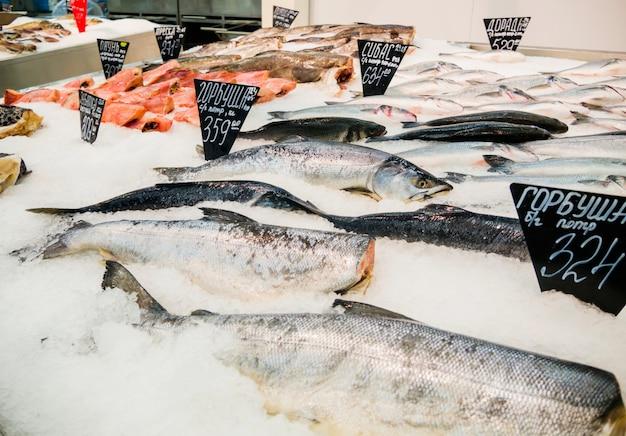 Pescado fresco en hielo para la venta en el mercado