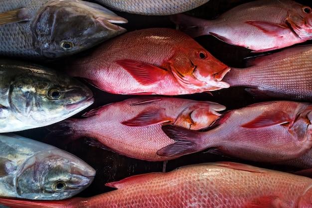 Pescado fresco en el mercado de cerca