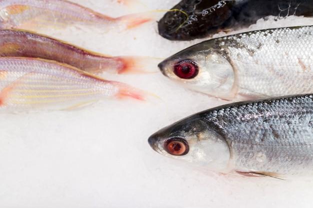 Pescado fresco sobre hielo saling en mercado