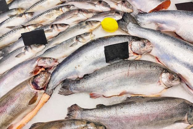 El pescado fresco para la venta se encuentra en hielo en una tienda