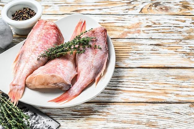 Pescado de pargo rojo crudo entero en un plato. fondo de madera blanca. vista superior. copie el espacio.
