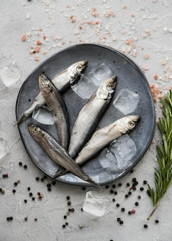 Pescado plano en plato con cubitos de hielo
