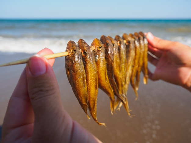 Pescados de mar secados en la playa. pescado de mar seco en la playa