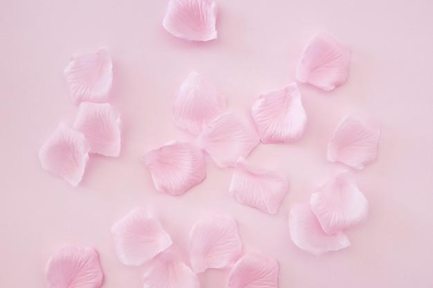 Pétalos de rosa sobre fondo rosa