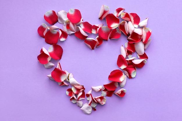 Pétalos de rosas rojas en forma de corazón sobre un fondo lila