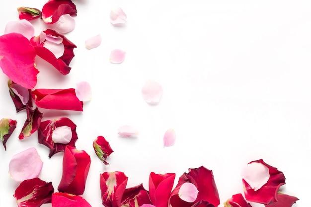 Pétalos de rosas rojas y rosas sobre fondo blanco.
