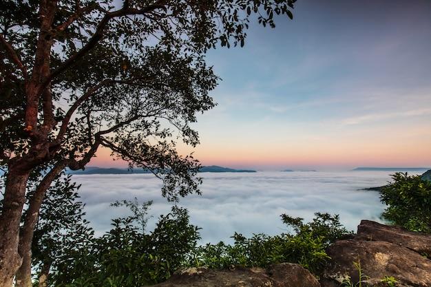 Pha-chom-mok, mar del paisaje de la niebla en la montaña en la provincia de nongkhai tailandia.