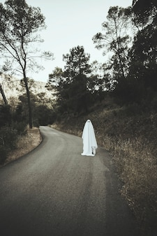 Phantom caminando por el camino rural