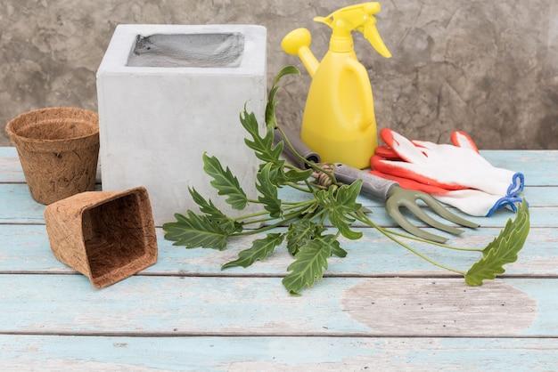 Philodendron xanadu y coco fibet pot sobre mesa de madera con pared de cemento