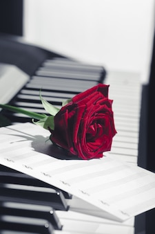 Piano de cola con rosa roja