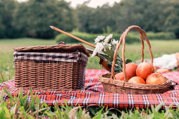 Picnic de frutas, manta y violín en el parque.