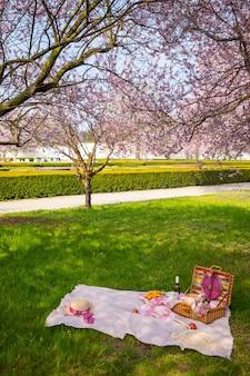 Picnic en el parque bajo los cerezos en flor con fruta, vino, pan y croissants