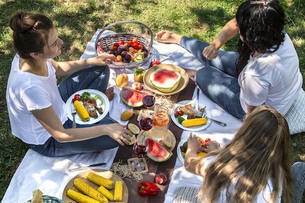 Picnic de verano con amigos en la naturaleza con comida y bebida.