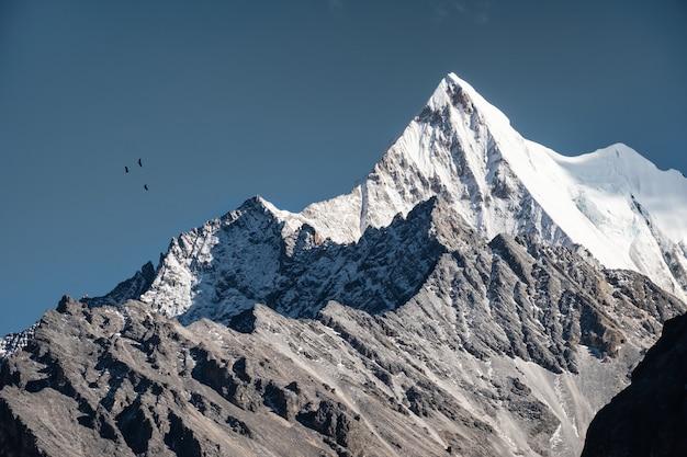 Pico de montaña rocosa de chana dorje con aves volando en el cielo azul